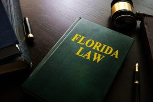 photo of green book with Florida Law on front